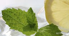 This green treat not only tastes good, but is good for you! The mint in this Mojito Blast (feel free to add more!) is an excellent palate cleanser that also promotes healthy digestion. The avocado is ...