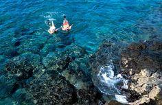 Hawaii Tourism  that won't break your budget.