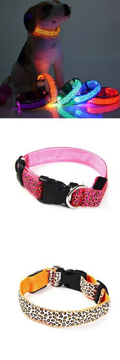 Love Dogs? Then this Dog Collar is perfect for your dog! Grab yours now at 50% off today!