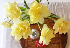 Virágok - Flowers - Megaport Media