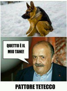 Maurizio Costanzo trova il suo cane