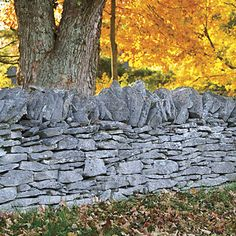 Stone fences, built in the 19th century by Irish immigrants, line scenic byways throughout Bourbon County, Kentucky