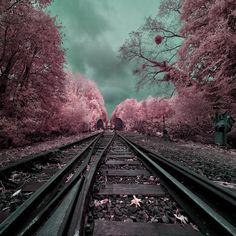 """My magical railway"" by David Keochkerian, via 500px."