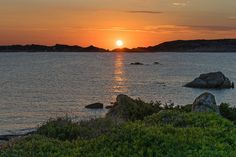 Iscurigada | A spectacular sunset captured at Maddalena isla… | Flickr