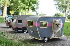 Pet Trailers