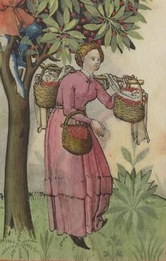 Skirt tuck and more stuff on sticks.  Tacuinum sanitatis, 9r. 1250-1300 http://gallica.bnf.fr/ark:/12148/btv1b105072169/f31.item