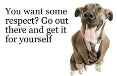 Dogs in Suits Quoting Mad Men. Stop Whining, Suits Quotes, Modern Suits, Mad World, Mad Men, Just Do It, I Laughed, Sayings, Funny