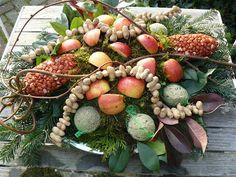 feeding the birds Bird Cakes, Do It Yourself Projects, Winter Garden, Bird Houses, Bird Feeders, Succulents, Birds, Holiday, Christmas