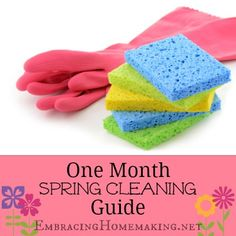 One Month Spring Cleaning Guide -- Makes Spring Cleaning cleaning simple! #StainPins