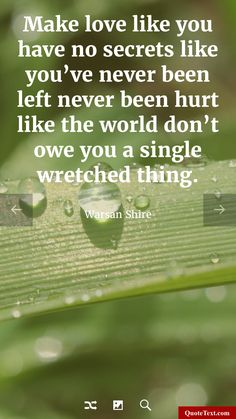 Make love like you have no secrets like you've never been left never been hurt like the world don't owe you a single wretched thing. - Warsan Shire