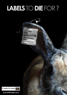 Say no to fur and leather - http://www.facebook.com/pages/Jaime-la-fourrure-seulement-quand-elle-est-portée-par-un-animal/143660222412872