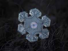 Ice rainbow 2, real snowflake macro photo on dark woolen fabric - Alexey Kljatov