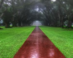 Rainstorm at Oak Alley Plantation Posted on July 17, 2014 by Justin Mier We were in New Orleans recently for a few days of vacation – one of the day trips we took was a short drive out to the historic and very famous Oak Alley plantation. The historic home, and in particular the 'Oak Alley' throughway that lines the main walkway to the house from the road, has been featured in a number of TV shows such as Interview with the Vampire, Primary Colors, Ghost Hunter, etc….