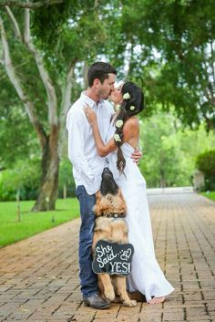 German shepherd, she said yes, engagement photo (How To Get Him To Propose Engagement Announcements)