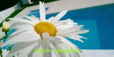 IMAG0630_new