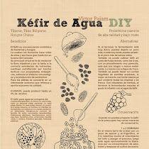 Infografía - Kéfir de Agua