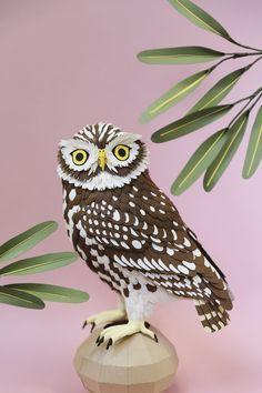 Little Owl paper sculpture by Diana Beltran Herrera Granny Chic, Editorial Illustration, Illustration Artists, Origami, Paper Birds, Owl Paper, Bird Barn, Bird Sculpture, Paper Sculptures