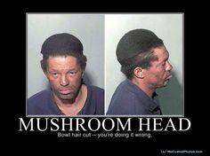 Mushroom Head Music Memes Stuffed Mushrooms Stuff