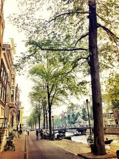 Amsterdam... a dream away right now!