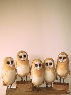 Simultaneously cute & spooky: Mister Finch Barn Owls...........