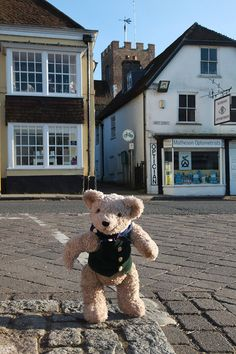 Binky at the top of Broad Street, Alresford, Hampshire.