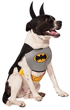 DC Comics Pet Costume, Classic Batman, Medium Rubie's https://www.amazon.com/dp/B00CN7V8DQ/ref=cm_sw_r_pi_dp_x_rYWzyb80560Y9