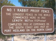 Rabbit Proof Fence - I learned about this in a Vet Tech class. Rabbits were brought to Australia in the 1700s on ships. They are not indigenous. As an attempt to control their spread into pastoral areas and the incredible damage they cause to the local ecology, fences were built.
