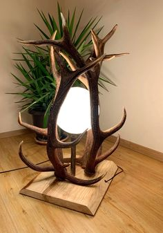 Antlers, Great Rooms, Horns, Woodworking Projects, Bedroom Decor, Table Lamp, Carving, Mirror, Lighting
