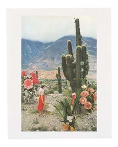 Urban Outfitters Cactus Collage Poster | Chairish
