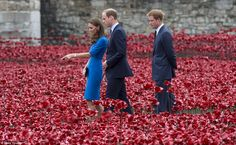 Time for reflection: The royals spent time walking through the maze of poppies during an o...