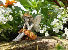 Miniature Fairy Garden Kelly - My Fairy Gardens
