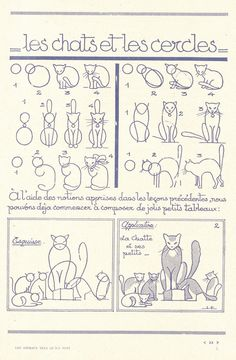 come disegnare un gatto
