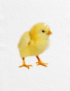 Chicken Watercolor Painting Art Print Bird watercolor yellow orange Home Decor Wall Decor Kitchen Decor Beach Decor