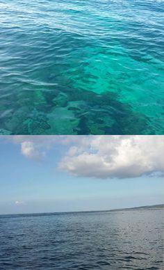 The blue of indonesia ,mangrove forest, nusa ceningan, Bali