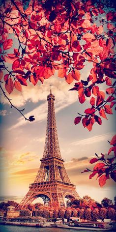Arranged fo iPhone X, Beautiful Wallpapers, Background (part Eiffel Tower Photography, Paris Photography, Landscape Photography, Nature Photography, Cute Wallpaper Backgrounds, Pretty Wallpapers, Galaxy Wallpaper, Paris Wallpaper Iphone, Wallpaper Samsung