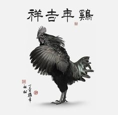 Happy Chinese New Year!  Heres another from my series for year of the rooster.  Ive partnered with talented Chinese calligrapher Jiyi Gao from the Gansu province in China to create a series of pieces paying homage to traditional Chinese Zodiac.  The large calligraphy at the top of the piece translates to Good fortune for year of rooster.Roosters are one of my favorite subjects and I have loved working on this series.  The pieces are printed on Hahnemuhle Bamboo paper which has a matte finish…