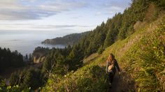 For jaw-dropping views and quad-burning efforts, these five hikes with beautiful views on the Oregon Coast are worth checking out.
