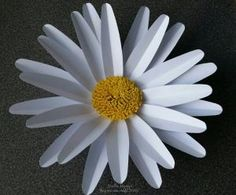 Please read before you download On this page you will find all the 9 paper flower templates I have shared so far. But there are a few things I need to point out in case you get lost on how t…