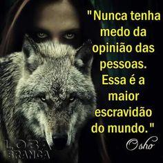 17 Melhores Imagens De Lobo Frases One Man Wolf Pack Two Wolves