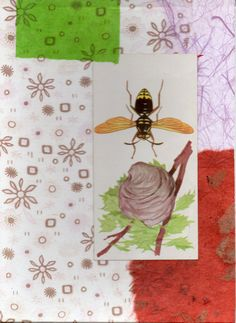 Wasp collage with abstract background using vintage by paperwerks