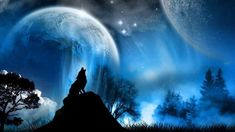 Native American spirit of the wolf power full meditation good for astral projection. very relaxing meditation with the wolf.
