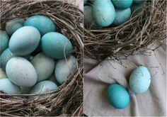 Как красиво покрасить яйца Вам наверняка известно, как приготовить натуральный краситель для яиц из луковой шелухи. В результате можно получить гамму от бледно-оранжевого до насыщенно-коричневого. А как насчет небесно-голубого? Вы удивитесь, но и этот оттенок можно получить, взяв продукт из холодильника. Краснокочанная капуста — вот что поможет покрасить яйца в удивительный нежно-голубой цвет. Спешим поделиться …