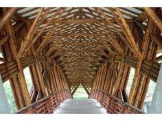 Resultado de imagen para arquitectura con bamboo
