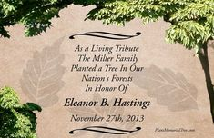 Memorial Tree Card:  Plant a memorial tree.