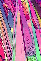 Flickr. Microscopy