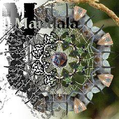 Computer Graphics - Photoshop and Illustrator project: Mandala