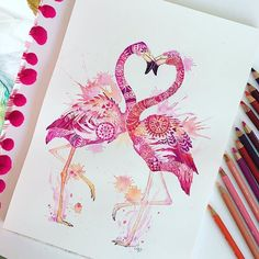 Mandala flamingoes by Carlie Edwards - coloured pencils / water colours