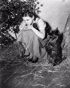 photo candid Judy Garland and Toto behind the scenes The Wizard of Oz 891-20