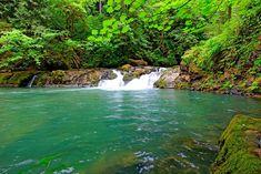 Cavitt creek falls in Oregon Car Camping Essentials, Car Camper, Weekends Away, Grand Tour, Waterfalls, The Great Outdoors, Oregon, Bucket, Tours