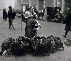 Cuando se acercaban las navidades era muy típica la aparición de vendedores de pavos y de pollos que se ofrecían en la misma calle. La fotografía está tomada en la Plaza de Santa Cruz, en Diciembre de 1925.